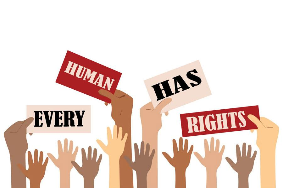 Human Rights Tribunal Phone Numbers.